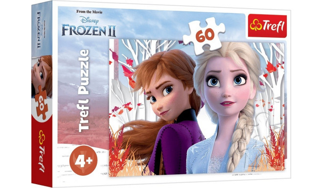 TREFL Palapeli Frozen 2, 60 palaa