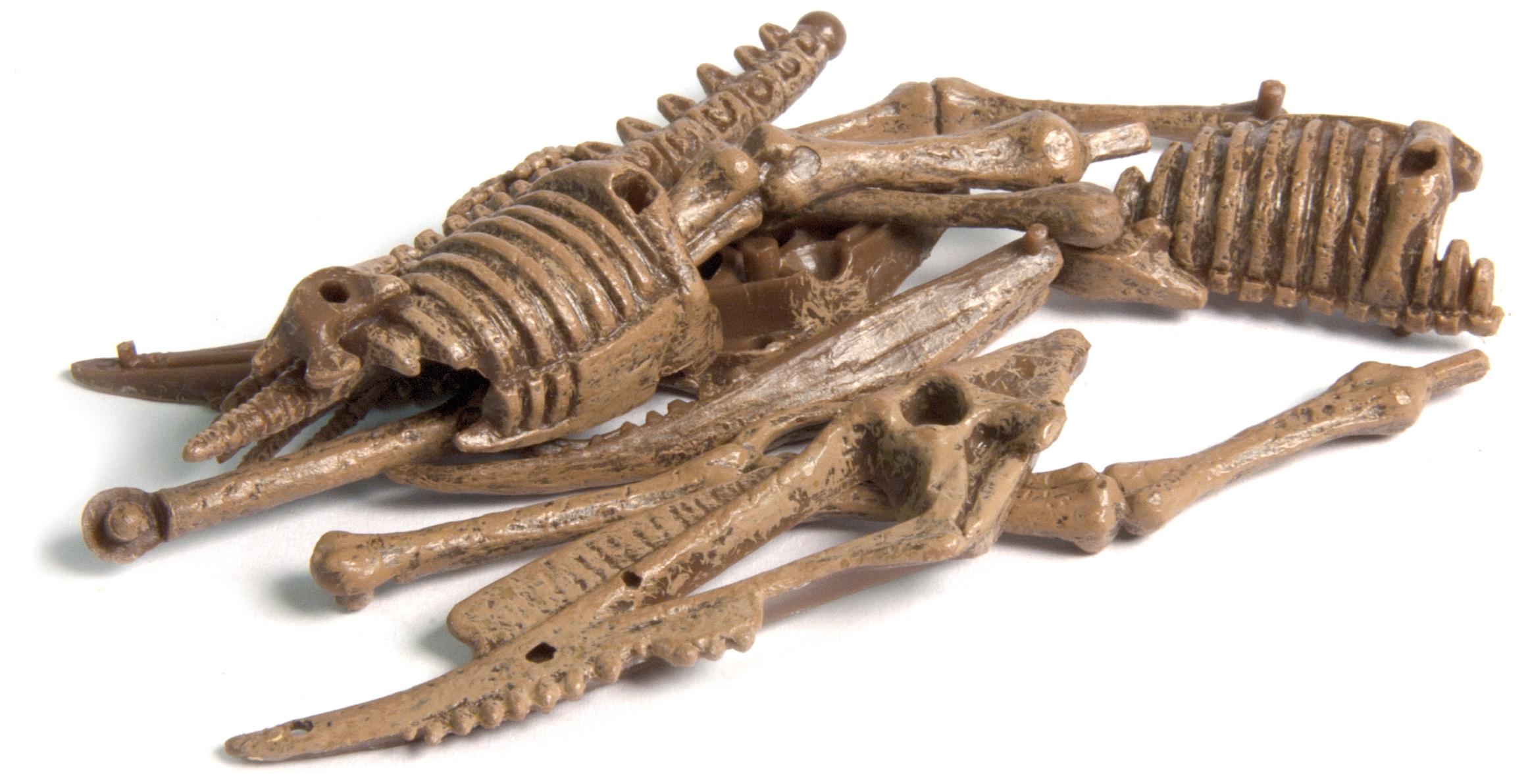 GEOWORLD Jurassic muna- lendavad koletised