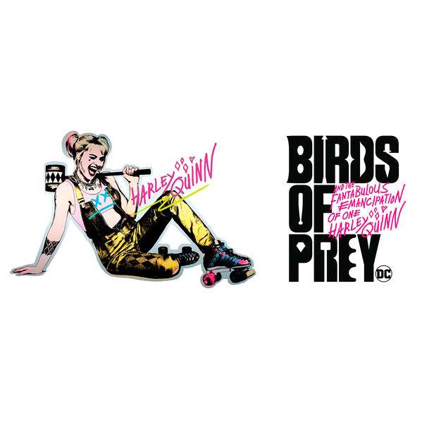 DC Comics Birds of Prey Roller Skates mug